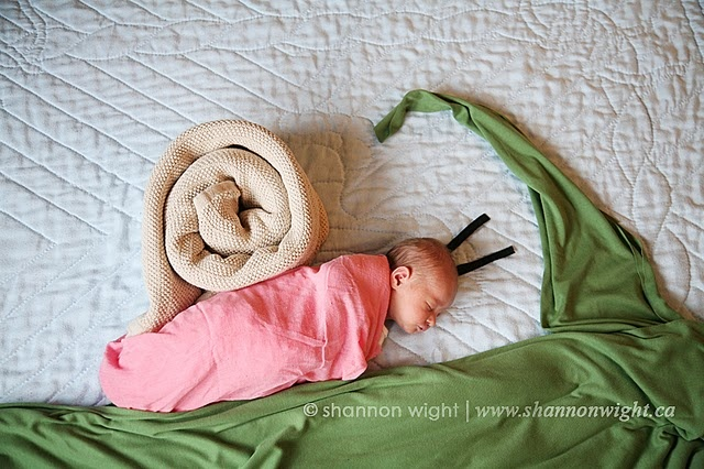 my try and Mila's Daydream: http://milasdaydreams.blogspot.com/ #newborn #photography