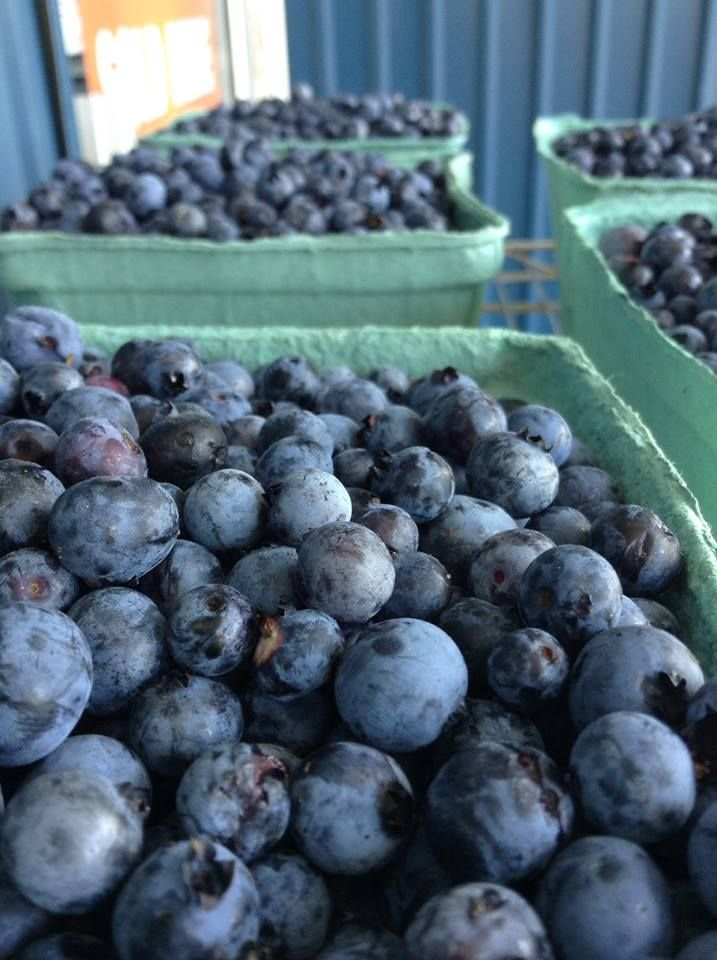 Granite Town Farms is a family-owned-and-operated, award-winning, wild-blueberry farm, located in St. George, New Brunswick, on the beautiful Bay of Fundy. Don't miss their Signature Taste Tour (wild blueberry wine sample included!). http://bit.ly/1LDPpQi