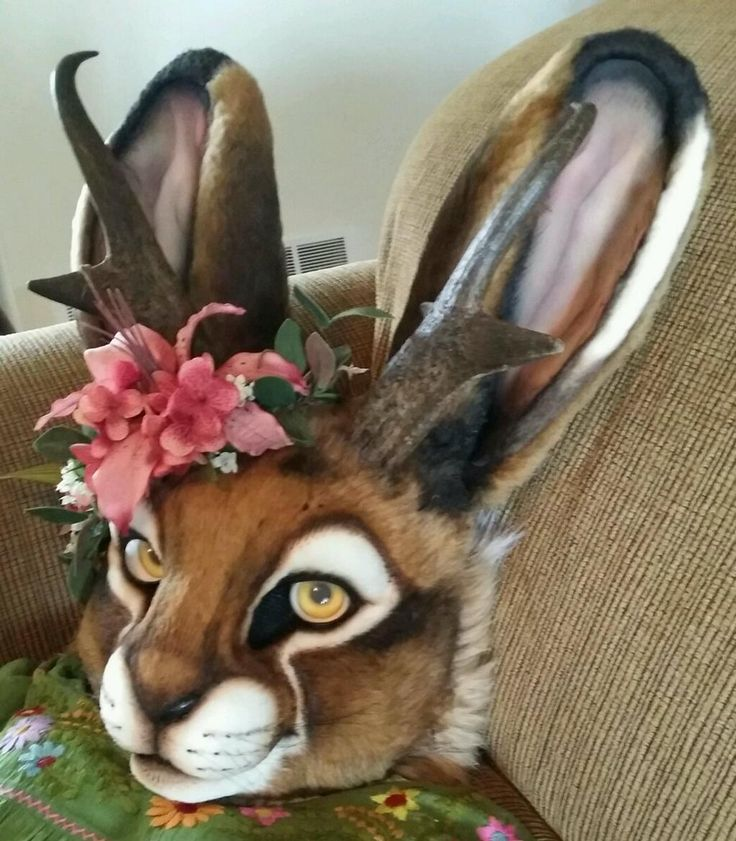 realfursuits: Maker - StuffedPandaStudios (pretty sure) one the best realistic Jack-alope-or is it Jill-alope?