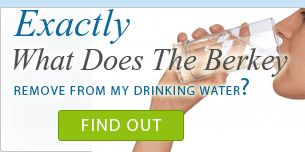 Berkley Water Filter System removes fluoride and other harmful toxins from tap water.