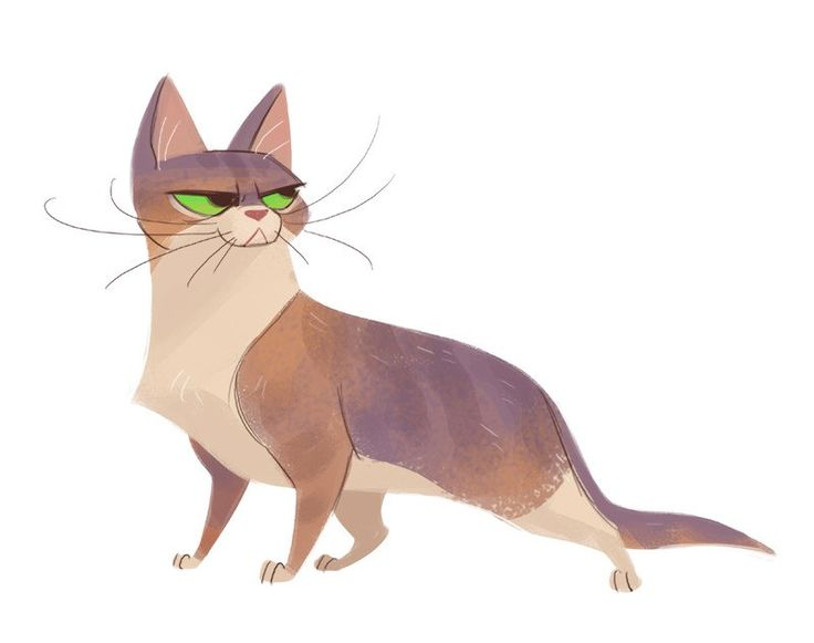 Daily Cat Drawings ☆ || CHARACTER DESIGN REFERENCES™ (https://www ...