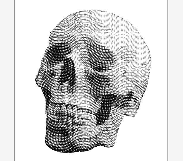engraved illustration effect