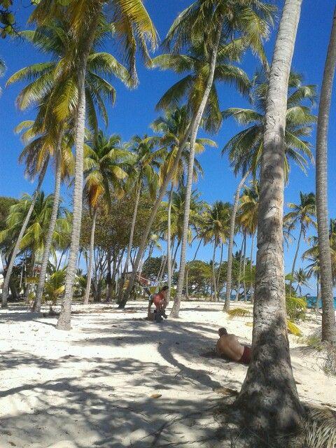 Marie Galante !! Marie-Galante, en créole marie-galantais Marigalant ou Mari-galant, est une île de l'archipel des Petites Antilles située à 30 km au sud-est des côtes de la « Guadeloupe continentale », dont elle est une dépendance administrative. Wikipédia