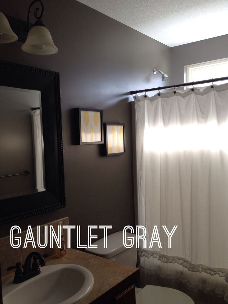 Gauntlet Gray Bathroom Design Small Dream Decor Small Bathroom