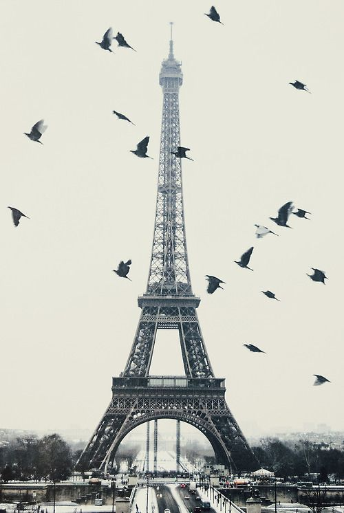 Paris Pin by www.tripsandtips.fr