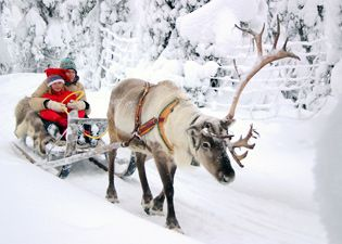 Winter Holiday in Finland - full of activities!