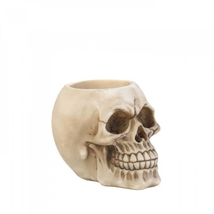 Skull Head Desk Accessory Pen Pencil Holder Utensils Halloween Office Decoration #DragonCrest