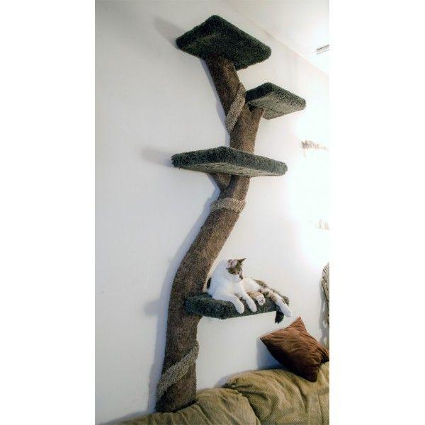 Best 25 cat wall ideas on pinterest cat climbing cat climbing wall and cat wall shelves - Wall mounted cat climber ...