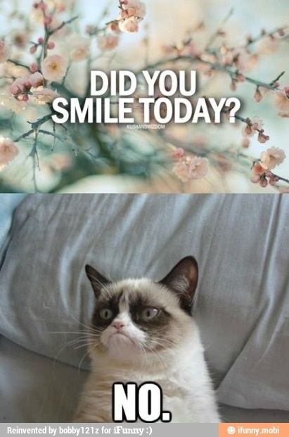 Frowning cat ....