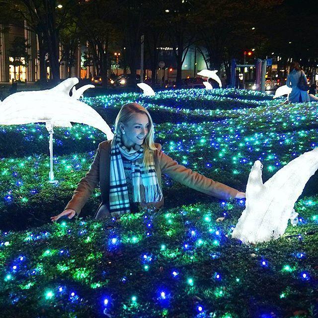 Magic in the air✨🐬🐬🐬 Друзья, хочу перед Новым Годом слетать в Гонконг, кто-нибудь может посоветовать лучшие места для посещения, видовые, рестораны, магазины? Наверняка есть какие-то секретные места😊 #japan #illumination #magic #dolphins #nighttime #picoftheday #instaplace #yuryablinchik #япония #иллюминация #сказка #дельфин #магия #инстаграмнедели #юляблинчик #イルカ #イルミネーション #夜 #ロシア人 #ユーリャ #ユーリャブリンチク