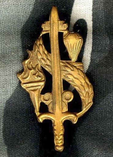 REP of VIETNAM Parachutist Airborne Intendance Branch insignia