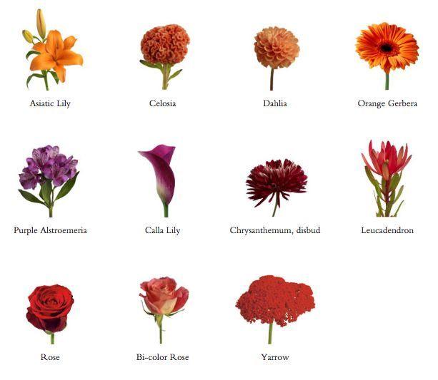 List Of Fall Wedding Flowers In Season Asiatic Lily Asters Calla Lilies Chrys 2019 Li Bridal Bouquet Fall Fall Bridal Bouquet October October Wedding Flowers