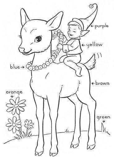 Blue Bonnet INMACULADA R L Picasa Nettalbum Coloring SheetsColoring