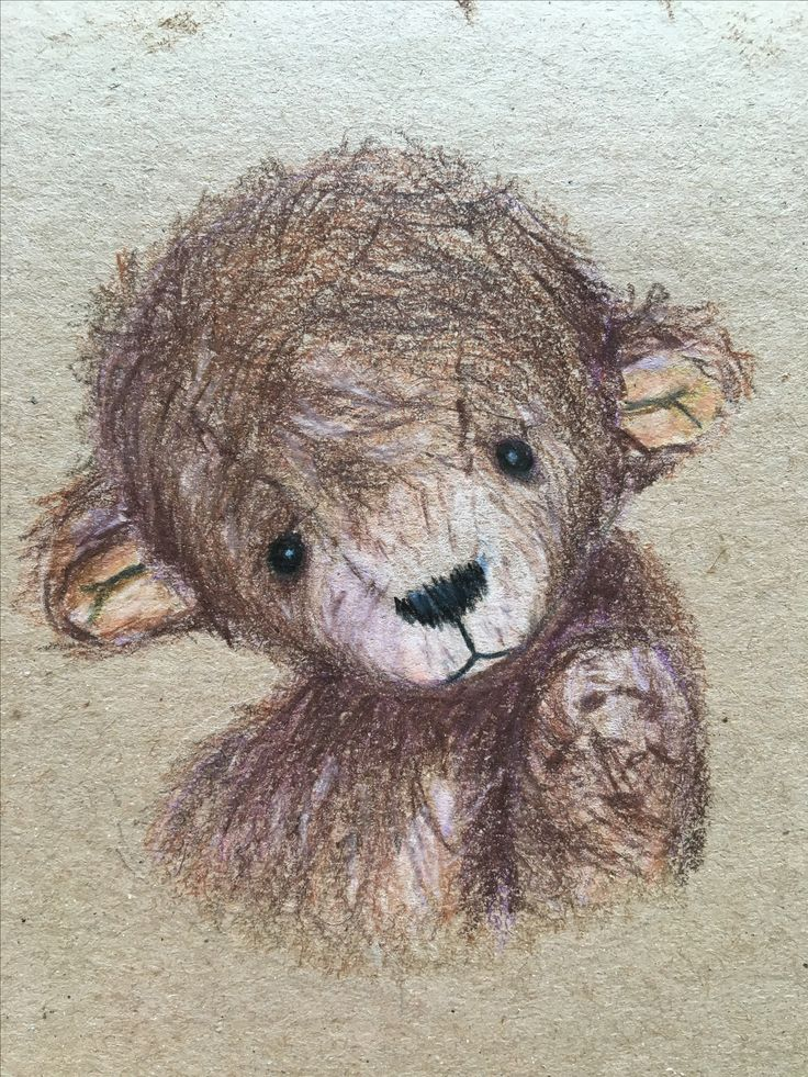 Teddy bear colored pencil drawing cute animal illustration