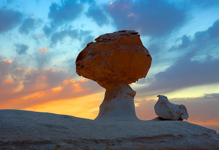 This picture was made in the Egyptian desert at sunset. The stones look like a real chicken and mushroom. Tags: desert, stones, sunset, Egypt