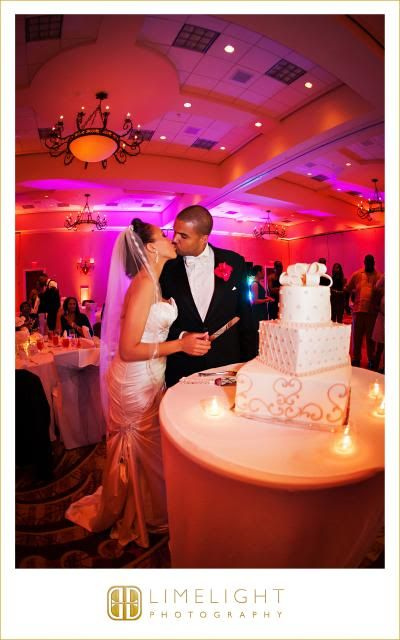 Bride and Groom, Cake, Limelight Photography, Renaissance Hotel, Tampa FL www.stepintothelimelight.com
