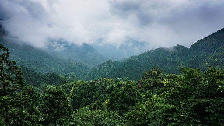 Green Trees Yaksuhima