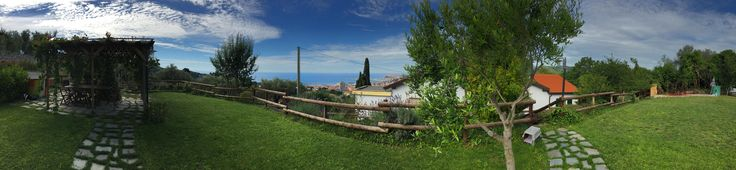 Panoramic garden