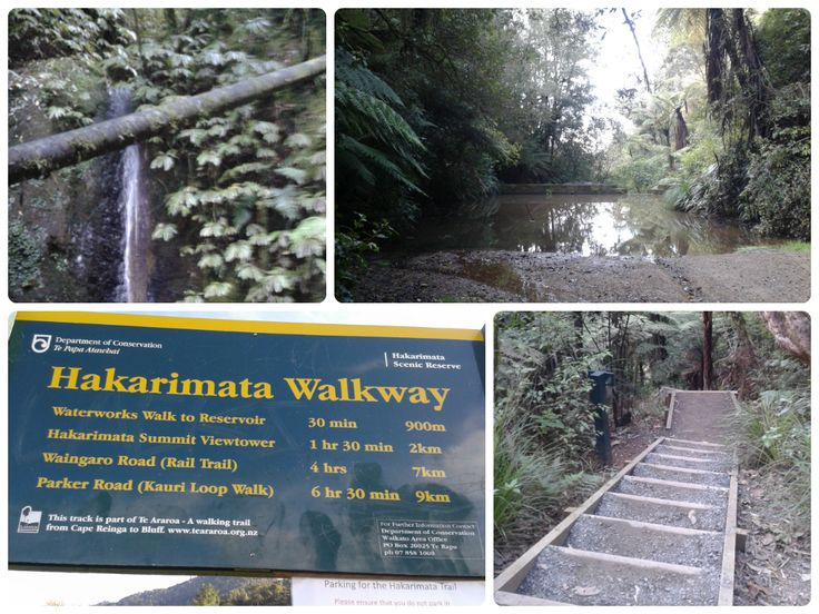 Hakarimata Lookout Walk - You'll be sick of stairs by the end! | Move Love Eat