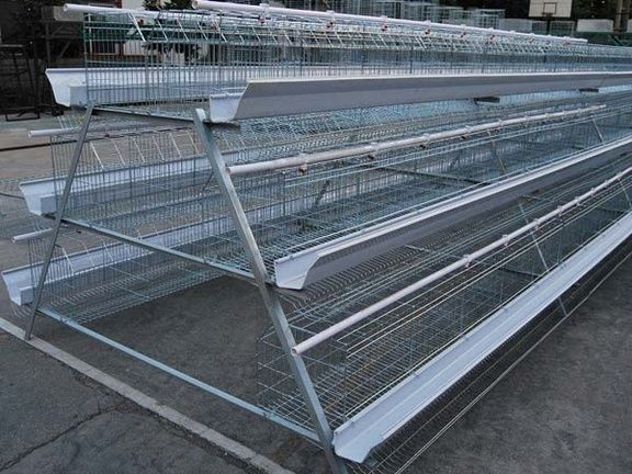 BH Poultry - Layer Cages