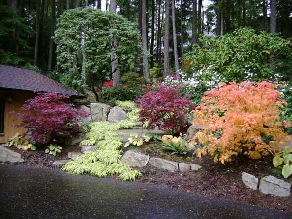 824 best Landscaping a slope images on Pinterest ...