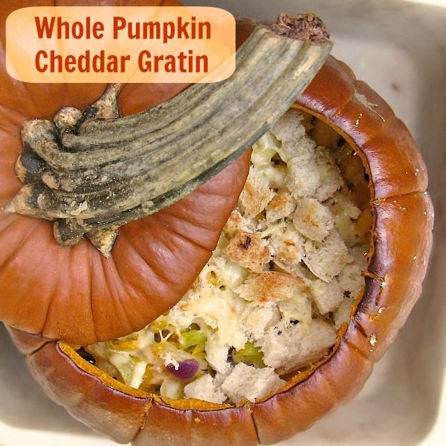 Ever cook an entire pumpkin? It's easy! Whole Pumpkin Cheddar Gratin   TeaspoonofSpice.com