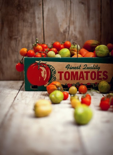 Tomatoes love this shot!: Green Tomatoes, Gardens Tomatoes, Birthday Recipes, Red Green, Food Photography, Fresh Tomatoes, Favorite Recipes, Heirloom Tomatoes, Katy Ate