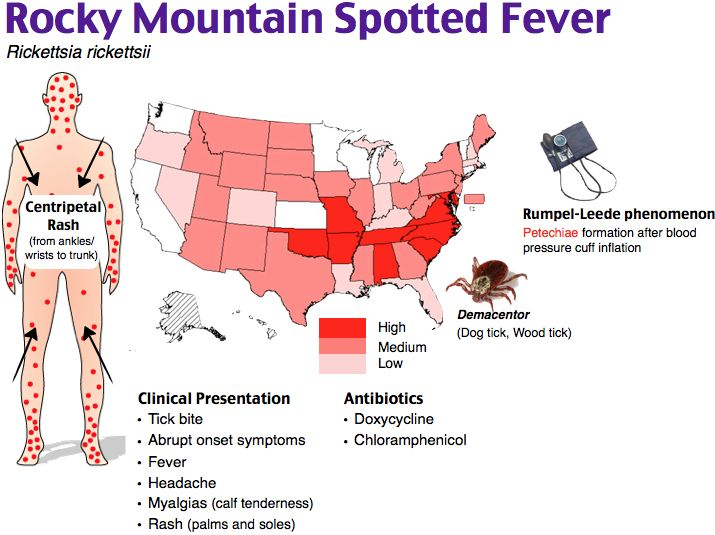 Rocky Mountain Spotted Fever  Tx c Doxycycline in all pts. Pts c allergies/pregnancy tx c Chloramphenicol