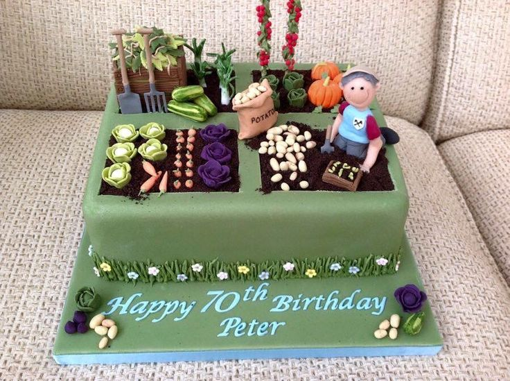 70 birthday cake 70th birthday garden birthday cake adult birthday cakes allotment cake vegetable cake garden cakes garden theme cake dad cake - Garden Design Birthday Cake