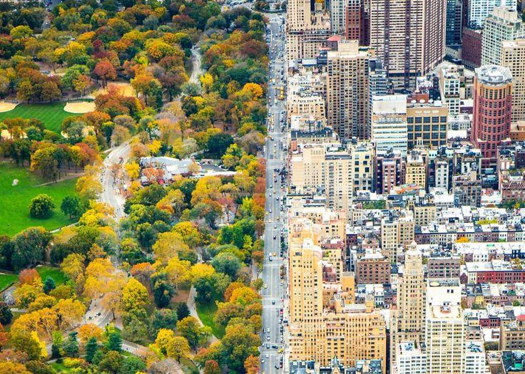 Город и Центральный парк в Нью-Йорке: Осенний контраст.   Vinegret
