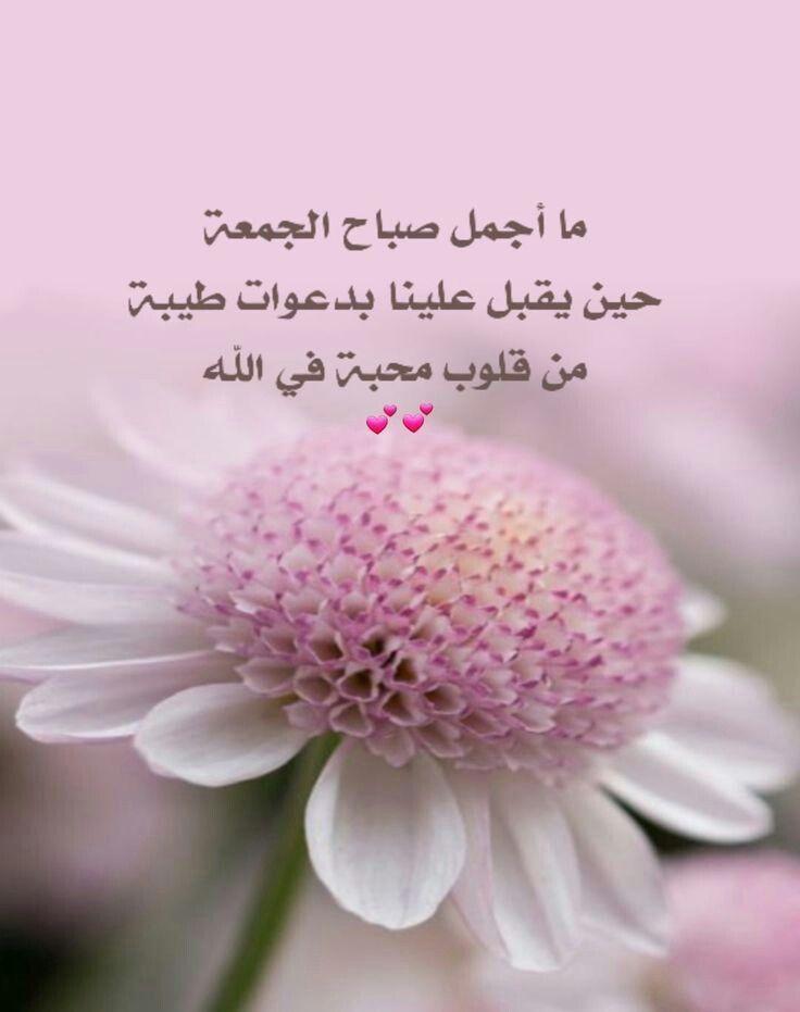 يسعد صباحكم Good Morning Arabic Quran Quotes Love Blessed Friday