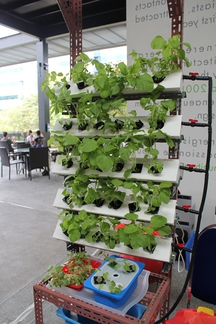 Http Blog Ecocityhydroponics Com Vertical Wall Mounted