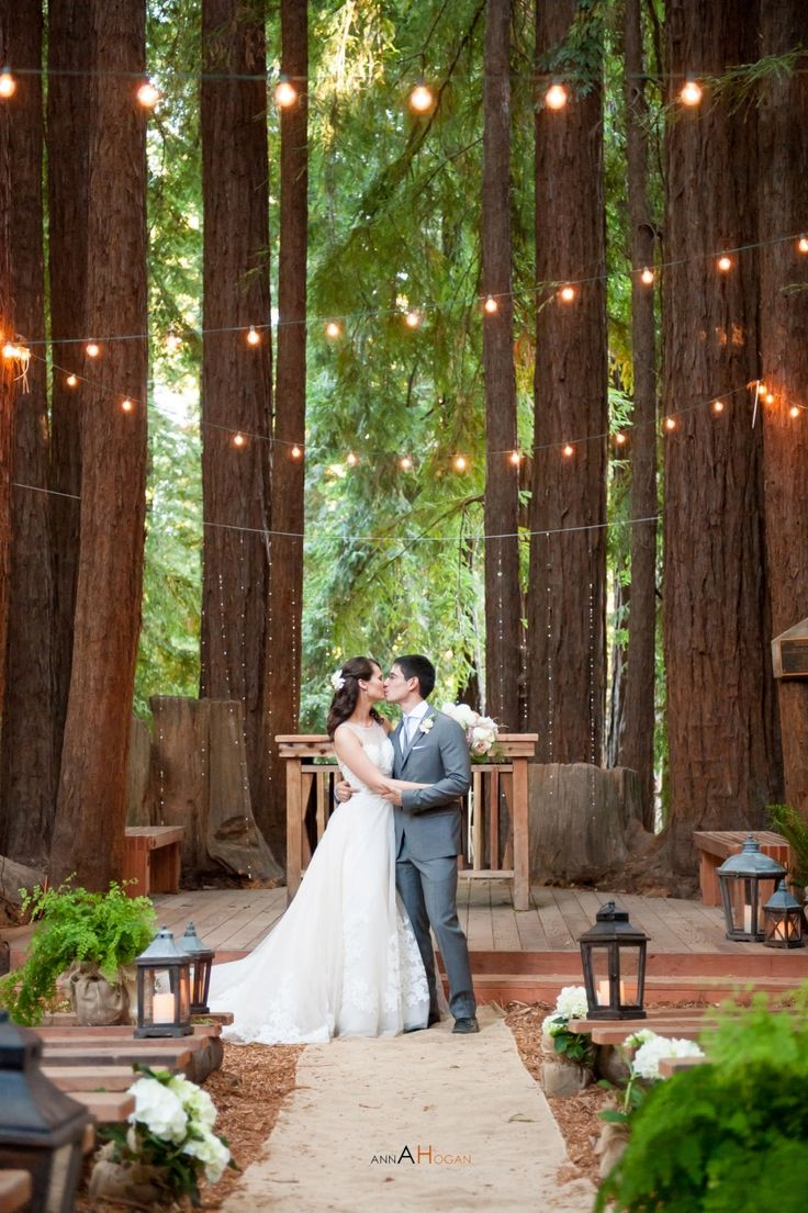 15 Best Ideas About Redwood Wedding On Pinterest