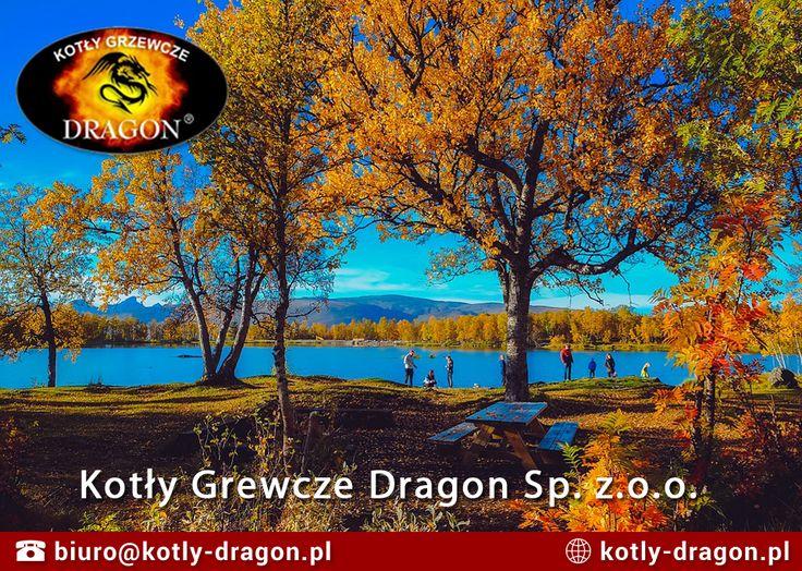 🍁 Dziś rozpoczyna się astronomiczna jesień, która oznacza przede wszystkim mroźne noce i poranki. Pamiętaj, aby odpowiednio przygotować się na nadchodzące ochłodzenie. 🍂 www.kotly-dragon.pl #kotłygrzewcze #jesień #ogrzewaniedomu