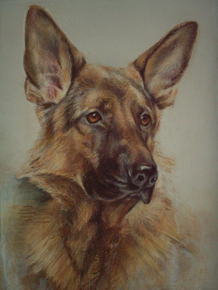Een portret van uw liefste, een hondenportret in olieverf, pen of gemengde techniek
