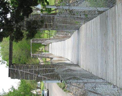 moline swinging bridge