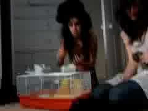 #Amy #Winehouse and #Pete #Doherty #tripping together. #Desaster #High #SUPERHIGH #RIP