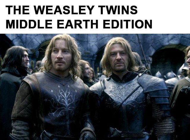 13 Epic Harry Potter Vs Lord Of The Rings Memes Harry Potter Vs Twilight Twilight Memes Lord Of The Rings