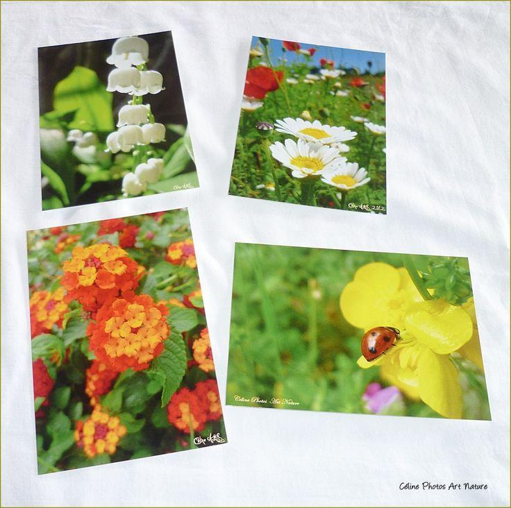 Lot de 4 cartes postales 10x14cm Fleurs et Muguet réalisées avec les photos de Céline Photos Art Nature. : Cartes par celinephotosartnature