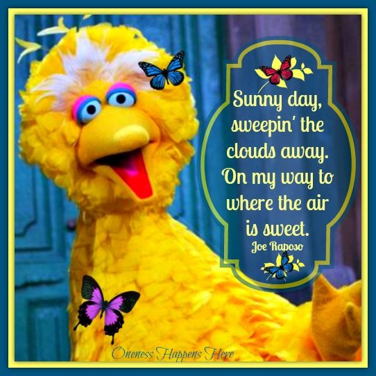 I Can Still Sing This Song. Happy Quote-Big Bird