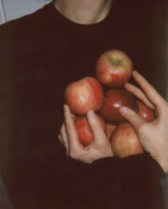"""Here, I found an apple orchard in the country.  There's lots of trees filled with bright red apples.  Look at them!""  The protector said with a smile, Glitch smiled back at her.""  This is great, this is plenty.""  He says, and holds the bag open for her."