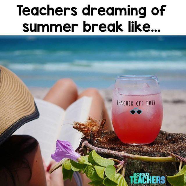 Book Beach My Favorite Drinking Buddy Are All I Need Grab Your Glass At Boredteachers Com Teacher Memes Funny Teacher Humor Teaching Humor