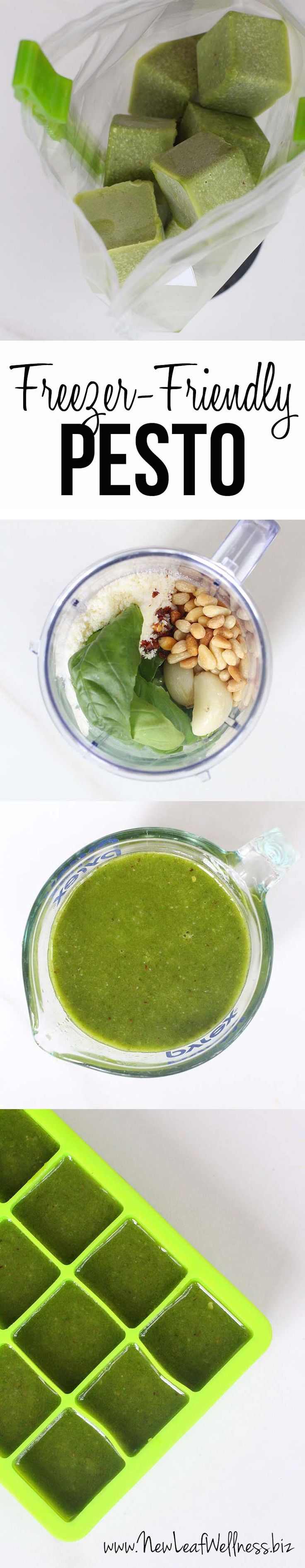 Make and freeze pesto recipe