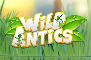 Wild Antics - In die kleine Welt der Ameisen entführt der neue Merkur Blueprint Spielautomat #WildAntics seine Spieler. Tatsächlich ist es den Verantwortlichen gelungen, eine kleine Welt mit vielen Details zu kreieren. https://www.spielautomaten-online.info/wild-antics/