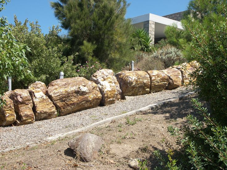 petrified tree trunk - Museum of Petrified Forest of Lesvos - Lesvos Island - Greece