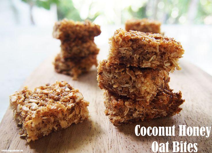 Coconut Honey Oat Bites