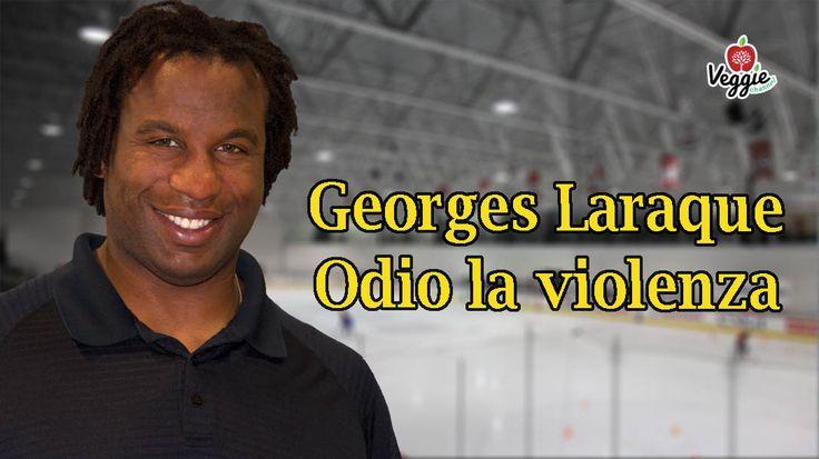 """NUOVO VIDEO su Veggie Channel: """"Georges Laraque - Odio la violenza"""". Soprannominato la roccia nel mondo dell'hockey sul ghiaccio in quanto agiva come sfondatore, Georges Laraque ora s'impegna nella promozione dello stile di vita vegan. Clicca sul LINK: http://veggiechannel.com/video/personaggi-famosi-mondo-vegan/georges-laraque-odio-la-violenza"""