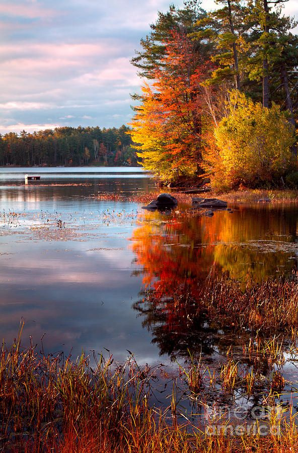 Autumn in New England; photo by Shell Ette Photography