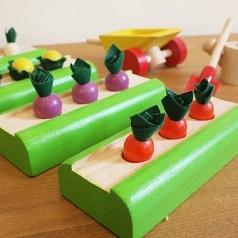 Plan Toys Овощные грядки для кукольного дома.  Konik.ru