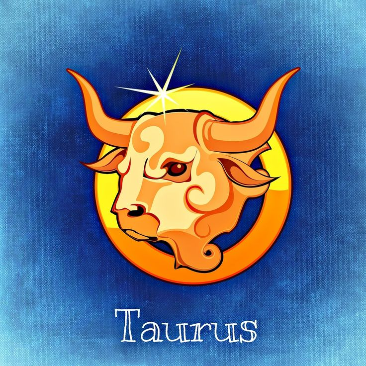 Taurus Love Profile – Devotion.  When dating a Taurus you must know that they are great lovers and they bring such commitment into your relationship. If you are dating or plan on dating a Taurus you need to know that he will not sweep you off your feet with grand gestures of love. Instead, he will pick out the subtle of gestures or gifts to prove their love.